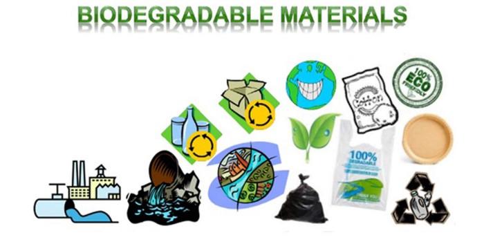 dùng túi giấy để bảo vệ môi trường