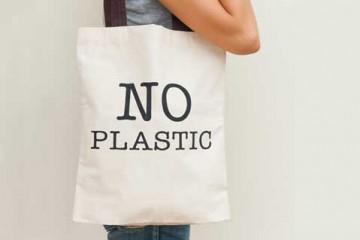 Vì sao in túi giấy và sử dụng túi giấy lại được coi là bảo vệ môi trường.